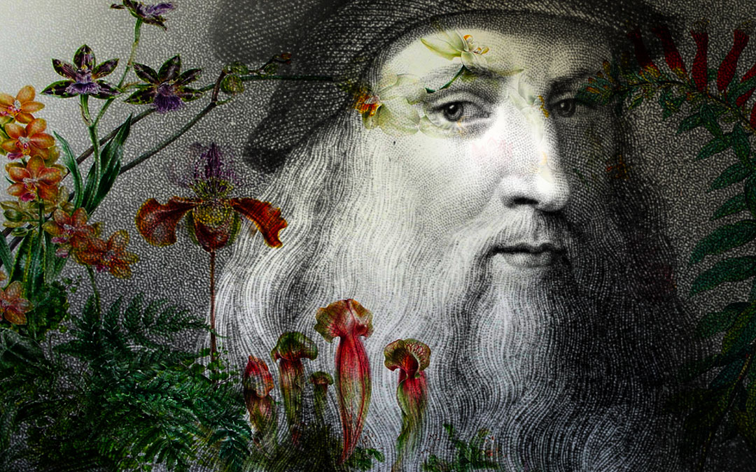 The Botany of Leonardo